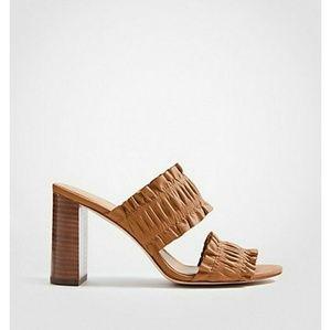 Ann Taylor Hartley heels